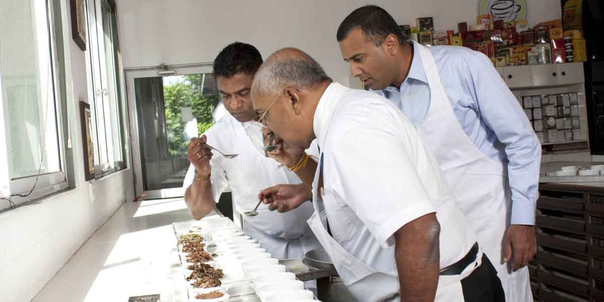Tea Tasting in Ceylon